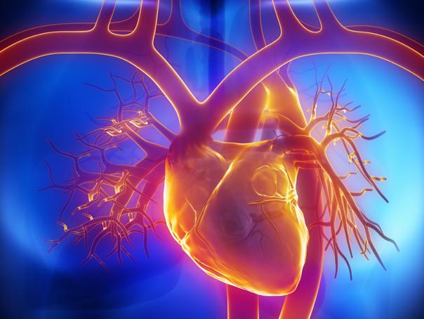 Premieră în lumea medicală: Prima inimă robotizată este în dezvoltare. Când va fi gata proiectul şi la ce nivel se ridică costurile de dezvoltare